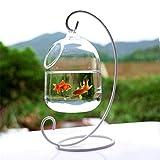 Eillybird Hängendes Glasaquarium Fischglas Aquarium Blumen-Pflanzenvase Innovative Klare 15cm...