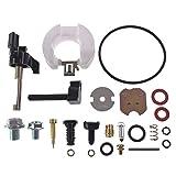 Ruichang Vergaser-Reparatursatz für Honda GX160 GX200 5,5 PS 6,5 PS Motoren