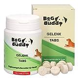 BeG Buddy – Gelenktabletten für Hunde, mit Grünlippmuschel, MSM, Teufelskralle, Glucosamin, für...