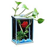DUTUI Mini Landschaftsbau Haushalt Aquarium, Wohnzimmer, Arbeitszimmer Und Büro Desktop-Dekoration...