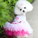 XGQ Hunde-Bekleidung Kleid-Spitze-Prinzessin Chihuahua Hundekleidung, Größe: XL (Pink) (Color :...