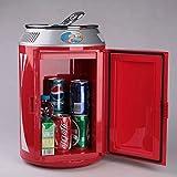 YWW-DJ Mini Car Kühlschrank, 11 Liter Tragbare Mini-Kühlschrank Cooler und Wärmer mit...