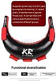 Power Sandbags 5–20 kg bulgarische Tasche – PU-Leder, langlebig, leer, Boxsack, ideal für...