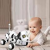 KOBWA Roboter-Roboterhund, Smart Robot Dog, Drahtloser Roboterhund, Gehen, Sprechen, Singen und...