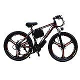 LRXG Mountainbikes Elektrofahrrad Beach Snow Bicycle 26'e Fahrrad 300W 36V / 13AH Elektro...