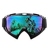 Motorradbrillen Hochwertige TPU-Harz Anti Winddichter UV Schutzbrille Skibrille Verstellbarer...
