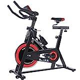 ISE Profi Indoor Cycle Ergometer Heimtrainer mit Pulsmesser, LCD Anzeige,Armauflage,Gepolsterte...