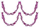 DollsofIndia Set mit 2 dekorativen Luftschlangen, Magenta mit weißem Papier, Länge je 172,7 cm...