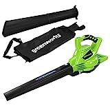 Greenworks Tools GD40BV Laubsauger und-Laubbläser 2in1 ohne Akku und Ladegerät, 40 V, Grün,...