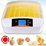 Sailnovo 56 Eier Inkubator Brutmaschine LCD Vollautomatisch Brutapparat Brutkasten für Hühner...