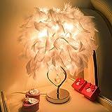Nachtlicht kreative weiches Licht Schlafzimmer Nacht Federtischlampe