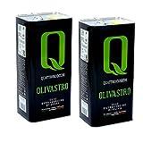 Natives Olivenöl Extra Olivastro 5 lt x 2