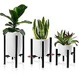AISHN Pflanzenständer, Blumenständer aus schwarz Metall Verstellbar Multifunktional Kunst aus...