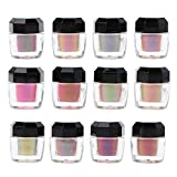 zhiwenCZW 12 Farben Chamäleons Pigment Perlenpulver Epoxidharz Glitter Magic Mirror Pulverharz...