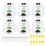LQQSD 6 PCS / 8 PCS / 10PCS / 12 PCS Sukkulente Pflanzenschutzhülle, Kunststoffgemüse...