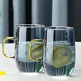 AKEFG 1,6 l Wasserkaraffe Klassische Krug Saftflasche Borosilikatglas Eistee Krug zum Aufgießen von...