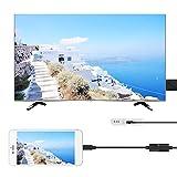 USB-Buchse zu HDMI-Stecker HDTV-Adapterkabel fr iPhone 7 / 7plus / 6s 6 Plus AC1068 - Schwarz