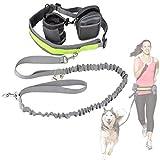 Cadrim Hunde Joggingleine mit verstellbarem Hüftgurt Bungee Leine zum handfreien Laufen/Fahrrad...