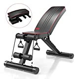 YOLEO Klappbare Hantelbank, Multifunktion Training Fitness Bank, 2 in 1 Sit-ups Bank mit...