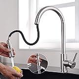 Lonheo Edelstahl Wasserhahn Küche ausziehbar mit 2 Strahlarten 360° drehbar Hochdruck...