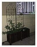 Rankgitter 2er Set,Metall,220 x 50 cm,Rankhilfe Garten,Vintage,Spalier,Schwarz Freien Hinterhof...