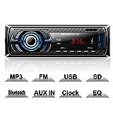 Hoidokly Autoradio mit Bluetooth Freisprecheinrichtung, 4 x 60W Digital Media-Receiver, FM/USB/...
