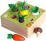HIQE-FL Montessori holzspielzeug,Holzpuzzle Karottenernte,Happy Farm Holzspielzeug,Baby Motorik...