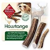 ChronoBalance® Geweih-Kaustange S (halbiert) für Hunde - 100% Hirschgeweih - Kauspielzeug,...
