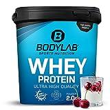 Protein-Pulver Bodylab24 Whey Protein Kirsche-Joghurt 2kg / Protein-Shake für Kraftsport und...