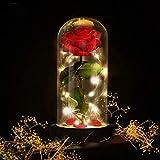 E-MANIS Die Schöne und das Biest Rose Geschenk Kit Glaskuppel Künstlich Rose Lampe Holzsockel...
