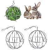 Dingzing Edelstahl Feeder Ball Spielzeug, 2 Stück Nager Futterball Kugel, Kaninchenspielzeug Hay...