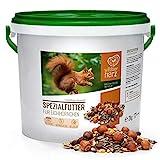 wildtier herz | Eichhörnchenfutter 2 kg für Eichhörnchen und Streifenhörnchen – Futtermischung...