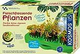 KOSMOS 632137 Fleischfressende Pflanzen, Insektenfresser selbst anpflanzen, Komplett-Set...