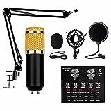 Streaming Mikrofon, Kondensator Mikrofon Set, Studio Mikrofon Kit Mit Sound Mixer, Mikrofon Set für...