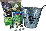 Zimmer-Feengarten-Set für Anfänger, Kräuterpflanzer mit Mini-Zubehör, Starter-Set (9-teilig)...