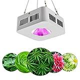 LED Grow Light Vollspektrum Grow Lamp200W, COB Integriertes Pflanzenlicht für...