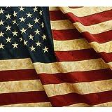Anley Vintage Style Tee gebeizt Amerikanische Flagge 3x5 Fuß Nylon - Gestickte Sterne und genähte...