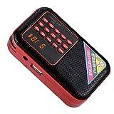 Hakeeta FM-Rauschunterdrckungsradio MP3-Sprachmusik-Player, Untersttzung von USB/TF/AUX, 87,5-108...