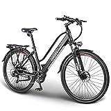 ESKUTE Elektrofahrrad 28 Zoll Pedelec E Citybike Wayfarer E-Bike mit 36V 10Ah Lithium-Akku, 250W...