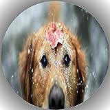 Fondant Tortenaufleger Tortenbild Geburtstag Hunde L25