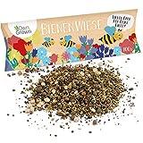 Bienenwiese Blumenmischung: 100g Premium Bienen Saatgut für bunte Bienenweide, Bienen und...