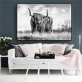 N / A Schwarzweiss-Kuhhochlandtier-Leinwandmalereiplakat und Druckwandgemlde Wohnzimmermalerei...
