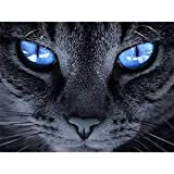 Unbekannt DIY 5d Diamant malerei komplette kit cat Eye Strass Stickerei Bild für...