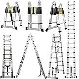 5m Teleskopleiter Ausziehbare Leiter Aluleiter 2.5M+2.5M Mehrzweckleiter Sicherheitsverriegelung A...