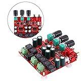 Audioverstärkerplatine,Verstärkermodul TPA3118...