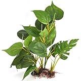 DIGIFLEX 20 cm künstliche Aquariumpflanze, grüne echt aussehende Aquarium-Zierblätter,...