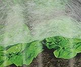 haus & garten Prima Flora 2 x Frhbeetvlies je 2x5m (insgesamt 4x10m) Frhbeet Schutz vor Vgel und...