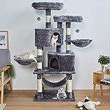 MSmask 145cm Kratzbaum Kletterbaum Stabil Mehrere Ebenen Plattform für Grosse Katzen mit groß...