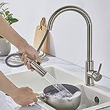 WOOHSE 360° Drehbar Küchenarmatur mit brause, Einhebelmischer Spültischarmatur aus Edelstahl,...