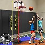 Infantastic Basketballständer mit Rollen - höhenverstellbar bis 236 cm, für drinnen und draußen...